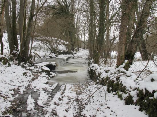 ruisseau-01-1.jpg